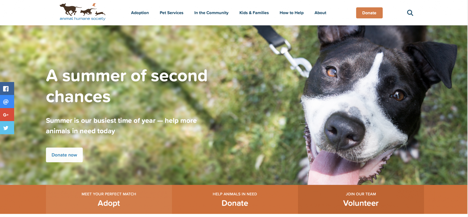 Animal Humane Society Website Home Page